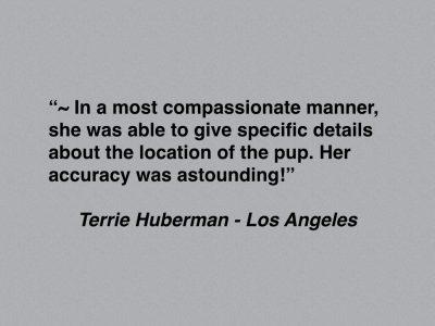 Terrie Huberman SHORT copy.001